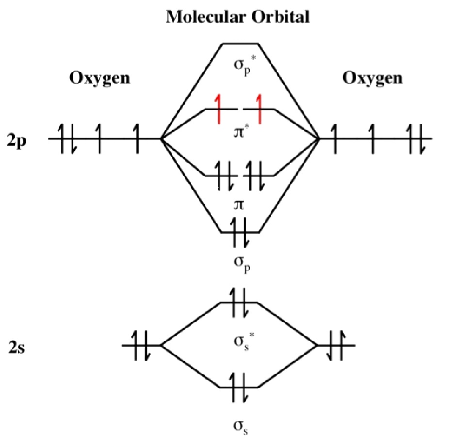 Chem1902 oxygen lewis structure for dioxygen mo diagram for dioxygen pooptronica Image collections