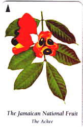 TOJ phone card showing the ackee
