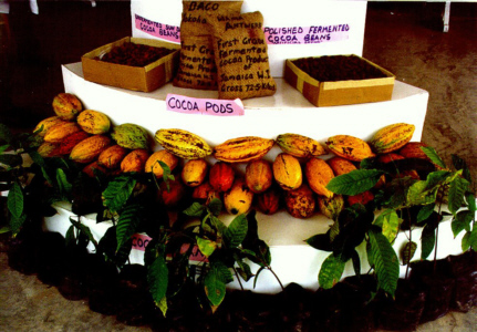 Ja. Cocoa Board display